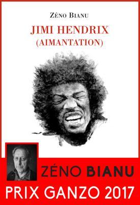 Jimi Hendrix (aimantation)
